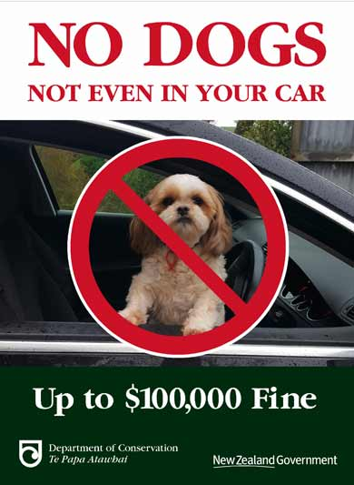 no-dogs-sign-1-390